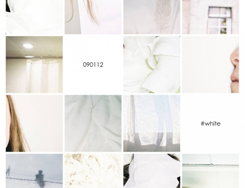 16 Days in White