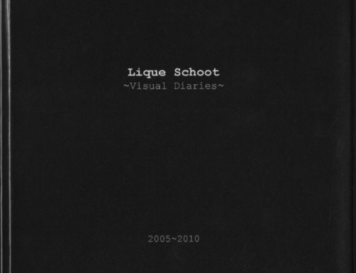 PUBLICATION > Visual Diaries 2005 – 2010 I 2010, NL