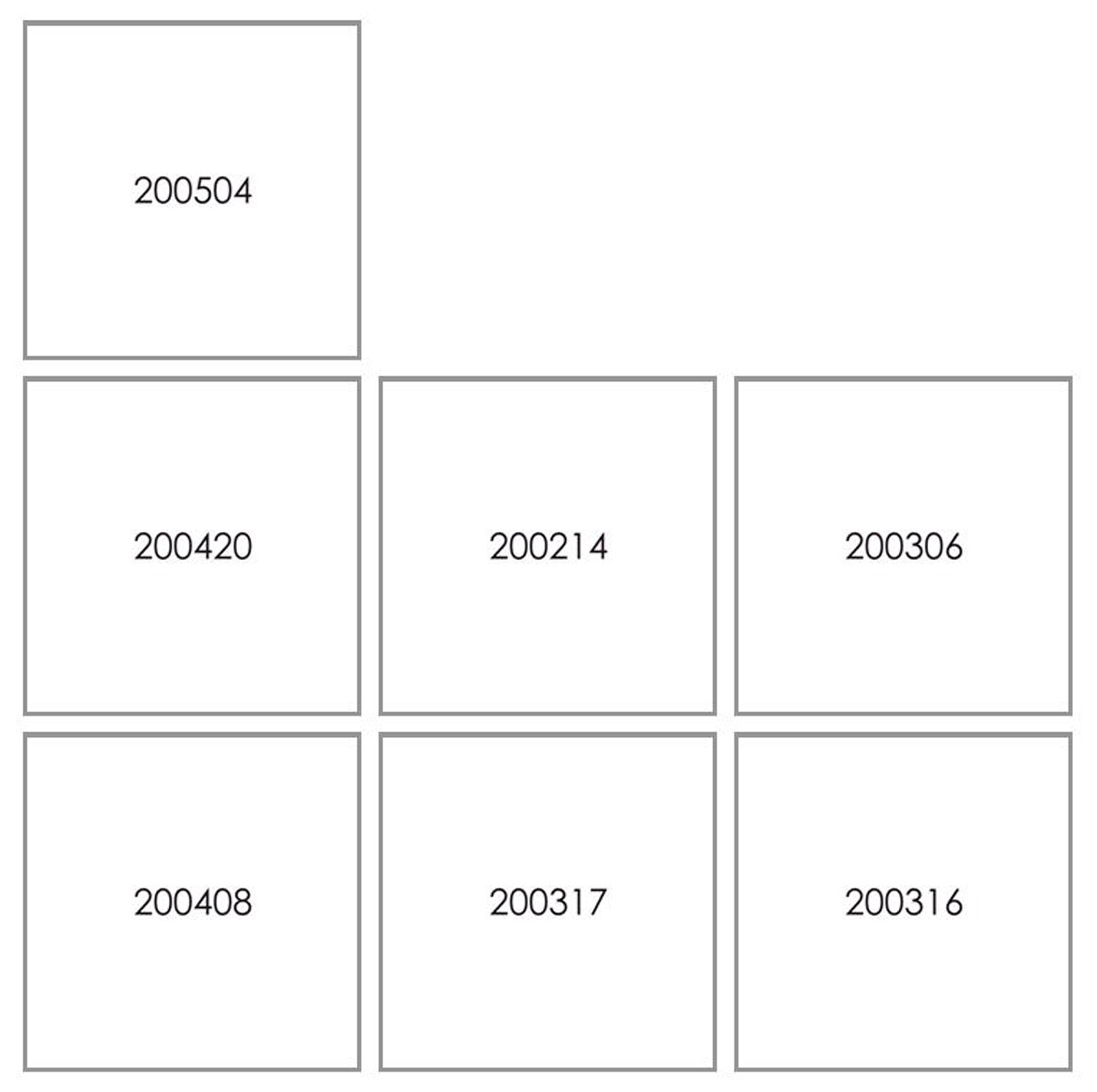 Lique Schoot, LS digids 2020 (7), 2020